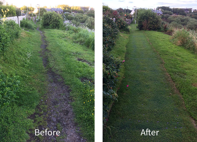 Path Before and After